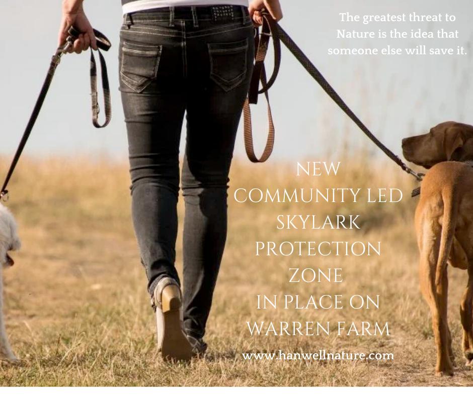 Help us create a Skylark protection zone on Warren Farm